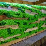 Decor din licheni verzi pentru HoReCa-min