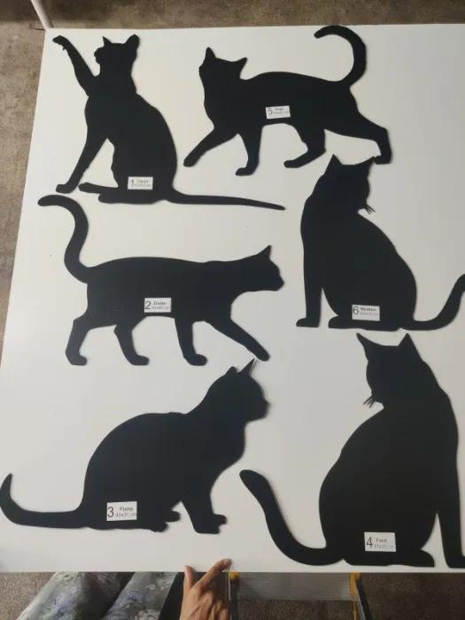 pisici diverse modele decoratiuni