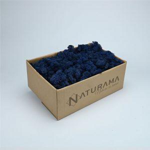 Licheni decorativi cutie 500 grame Albastru Marin