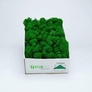 Licheni decorativi Naturama PREMIUM cutie 1000 grame Verde Mediu INTENS