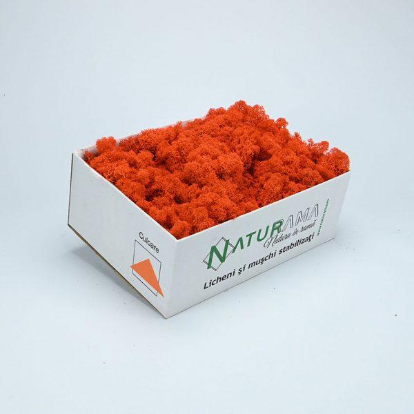 27 orange 1