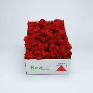 Licheni decorativi Naturama PREMIUM cutie 500 grame Rosu INTENS