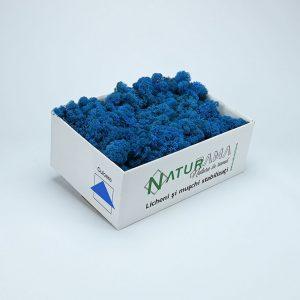 Licheni decorativi Naturama PREMIUM cutie 500 grame Albastru Azur INTENS