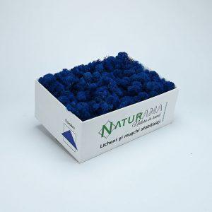 Licheni decorativi Naturama PREMIUM cutie 500 grame Albastru Marin INTENS