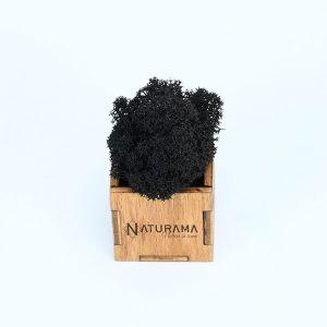 Licheni decorativi Naturama PREMIUM cutie 500 grame Negru INTENS