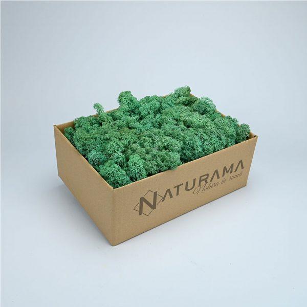 4 Verde Smarald 1