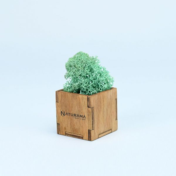 4 Verde Smarald 2